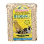 Bedding & Litter